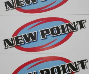 NEW POINT CICONIA
