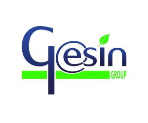 Gesin Group